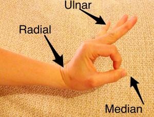 Motor Exam of the Hand
