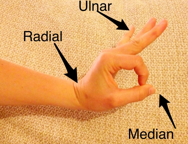 Motor Exam of the Hand