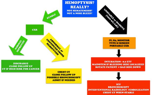 Hemoptysis Workup